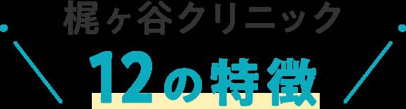 梶ヶ谷クリニック12の特徴